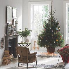 It's beginning to look a lot like Christmas in this #Dimpse living room. #farrowandball #christmasdecor #christmastree #festive #homedecor #decoration #decorinspiration #interiordesign #interior #interiors