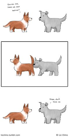 How do you do © Liz Climo