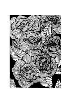 Roses Monochrome Illustration Print // by StaggIllustration