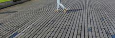 Houten vlonder, Rotterdam