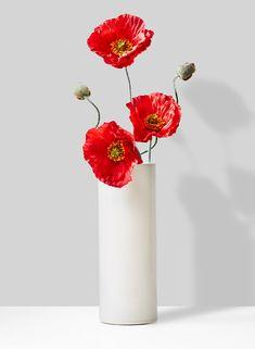 Ikebana Flower Arrangement, Flower Vases, Floral Arrangements, Flower Background Wallpaper, Flower Backgrounds, Cylinder Vase, Bud Vases, My Flower, Flower Art