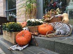 Halloween, pumpkin, decoration, restaurant