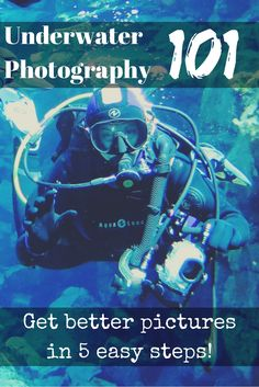 Underwater photography 101: get better pictures in 5 easy steps – World Aventure Divers – read more on: https://worldadventuredivers.com/2015/06/23/underwater-photography-101-get-better-pictures-in-5-easy-steps/