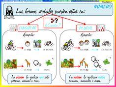 GRAMÁTICA ADAPTADA. EL VERBO 2: Carteles y actividades (primer y segundo ciclo Educación Primaria)