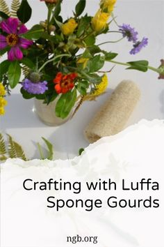 """Luffa and Flower Arrangements If you love flower arranging but are trying to limit the use of floral foam as a way to keep your blooms in place, you may want to try luffa. Luffas work great inside your flower vases to keep all your stems in place, like a natural """"floral frog"""" that won't scratch up your containers like chicken wire can. Love Flowers, Beautiful Flowers, Flower Vases, Flower Arrangements, Wild Bird Feeders, Floral Foam, Growing Seeds, Chicken Wire, Different Flowers"""