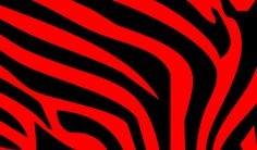 Red | red zebra wallpaper