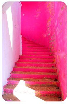 Amazing Fuchsia Tieks Stairs - guess where this was taken?