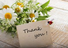 Contributor Thank-You's That Make an Impression — FundRazr Blog