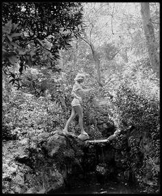 Image - 1950 / Marilyn sur les hauteurs des collines d'Hollywood, sous l'objectif du photographe Ed CLARK. (voir série complète des photos sur le blog, tags). - Marilyn-MONROE rare & candid - Skyrock.com