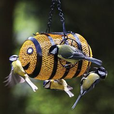 Fun Bee Feeder is versatile for sunflower hearts or shelled peanuts, adds a splash of color and style to any outdoor space while enticing more feathered friends! Durable wire screen feeder is crafted