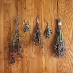 Drying Herbs: Easier Than You Think - Real Food - MOTHER EARTH NEWS