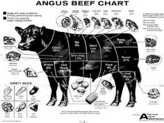 Cuts of meat - Angus Beef Chart Boeuf Angus, Angus Beef, Baby Beef, Livestock Judging, Meat Shop, Cattle Farming, Beef Cattle, Animal Science, In Vino Veritas