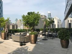 Review: Park Hyatt Bangkok - Live and Let's Fly Rooftop Garden, Terrace, Sky Bar, Steam Room, Square Tables, Hotel S, Common Area, How To Level Ground, How Beautiful