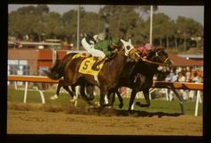 The inaugural Classic was a classic as a dead game Wild Again on the rail held off Gate Dancer and Slew o' Gold (between horses), with Gate Dancer being disqualified from second for interfering with Slew o' Gold.