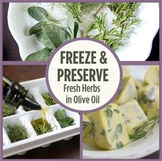 Freeze & Preserve Fresh Herbs in Olive Oil - Grow REAL Food - Organic, Non-GMO Food in Your Backyard Freezing Fresh Herbs, Preserve Fresh Herbs, Freeze Herbs, Benefits Of Organic Food, Eating Organic, Organic Vegetables, Organic Recipes, Whole Food Recipes, Frozen