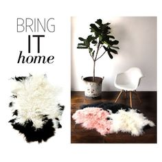 """Bring It Home: Disco Sheepskin Throw"" by polyvore-editorial ❤ liked on Polyvore featuring interior, interiors, interior design, home, home decor, interior decorating, Child Of Wild and bringithome"