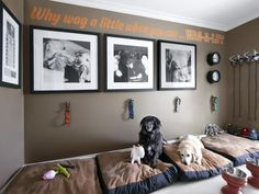 Vern Yip's Dog Den - Peek Inside the Homes of HGTV Stars on HGTV This is a great idea if you have a lot of animals.: Hgtv Host, Idea, Dogs, Dog Bedroom, Protection Y Animal Room, Diy Pour Chien, Diy Lit, Dog Bedroom, Bedroom Ideas, Vern Yip, Puppy Room, Dog Spaces, Dog Rooms