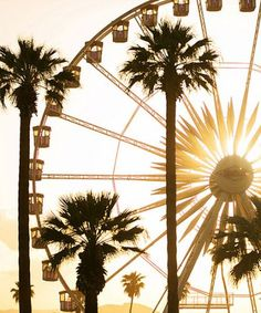 QUIZ: Which music festival should you go to this summer?