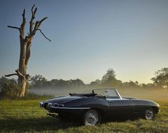 1962 Jaguar E-Type 3.8 Litre Maintenance/restoration of old/vintage vehicles: the material for new cogs/casters/gears/pads could be cast polyamide which I (Cast polyamide) can produce. My contact: tatjana.alic@windowslive.com