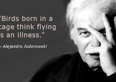 Birds born in a cage think flying is an illness. ~ Alejandro J. This is why Christians think there is something wrong with being an atheist. Cogito Ergo Sum, The Words, Words Quotes, Me Quotes, Sayings, Qoutes, Cheesy Quotes, Quotes Pics, Great Quotes