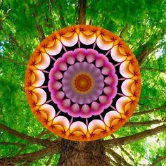 épanouissement ; blooming ; florescente Mandala de Pierre Vermersch Digital Drawings