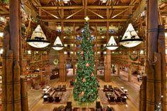 Wilderness Lodge 2014 Disney Christmas, Christmas Holidays, Christmas Tree, Wilderness Resort, Walt Disney World, Holiday Decor, Christmas Vacation, Teal Christmas Tree, Xmas Trees