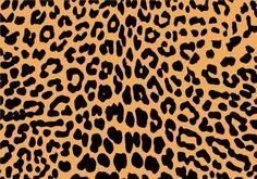 Kuvahaun tulos haulle leopard print