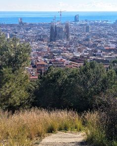 All roads lead to the Sagrada and then to the sea. #igersbcn #Barcelona #bunkers #sagradafamilia #igersbarcelona #travelpics #hike #viewfromthetop