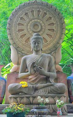 The lord Buddha Gautama Buddha, Buddha Buddhism, Tibetan Buddhism, Buddhist Art, Buddhist Temple, Buddha Artwork, Buddha Painting, Zen Meditation, Buddha Kunst