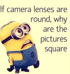 Best collection of funny minion quotes and images. Despicable me cute minion pictures with captions. Funny Minion Pictures, Minions Images, Funny Minion Memes, Minions Quotes, Funny Relatable Memes, Memes Humor, Minions Pics, Hilarious Quotes, Minion Stuff