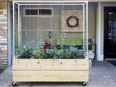 Take your plants vertical with a trellis planter. Use this planter as a focal point or as a privacy screen.