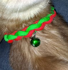 Ferret Paracord Collar-FAIL cause they just slip out of them we all know!