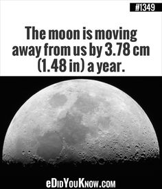 The moon is moving away from us by 3.78 cm (1.48 in) a year.