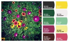 Paint colors from Chip It! by Sherwin-Williams - Picture and Chipp-ing by @Shauna Canter