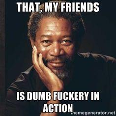 that, my friends is dumb fuckery in action - Morgan Freeman | Meme ...