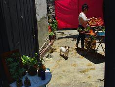 """""""El punto de las ciudades es la multiplicidad de opciones"""", decía Jane Jacobs Foto Mónica Tapia A."""