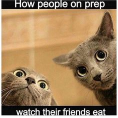 We have comprised a list of 20 funny shocked cat memes for your amusement. Take a look and I guarantee at least one of these will make you laugh. Workout Memes, Gym Memes, Gym Humor, Funny Memes, Workout Routines, Funny Shit, Funny Cats, Funny Laugh, Jaguar