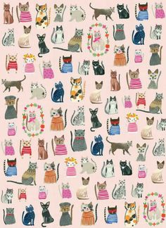 New wallpaper cat illustration gatos Ideas Cat Wallpaper, Trendy Wallpaper, Animal Wallpaper, Cat Pattern Wallpaper, Cat Roll, Gatos Cool, Cat Background, Photo Chat, Cat Drawing