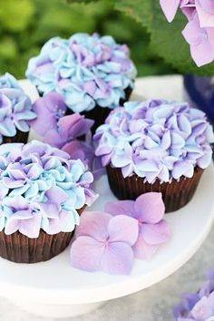 How gorgeous are these Hydrangea Cupcakes? Posted by My Baking Addiction on Thursday, 14 January 2016 Photo source What a pretty ideal to make cupcakes look like Hydrangea by piping the frosting. Hydrangea Cupcakes, Cupcakes Flores, Purple Cupcakes, Easter Cupcakes, Flower Cupcakes, Cute Cupcakes, Blue Hydrangea, Spring Cupcakes, Lavender Cupcakes