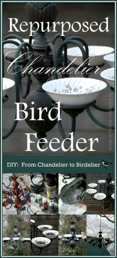 DIY: From Chandelier to Birdelier, upcycled chandelier repurposed as a bird feeder homeiswheretheboa. Bird House Feeder, Diy Bird Feeder, Beautiful Birds, Beautiful Gardens, Lawn And Garden, Garden Junk, Garden Sheds, Repurposed, Upcycled Garden
