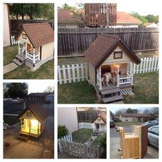 Dog House (Pet Supplies) in San Antonio, TX - OfferUp