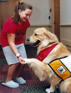 If you've ever considered making your dog a therapy dog #dog #hero #therapy
