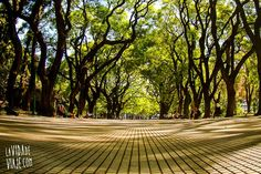Plaza San Martín | Buenos Aires, la París de Sudamérica | http://lavidadeviaje.com/buenos-aires-la-paris-de-sudamerica/