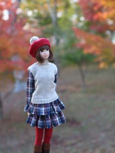 Japanese momoko doll.