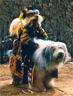 The Greatest Sci Fi, Fantasy and Horror Dogs! Man's Best Friend and sometimes Worst Enemy, here is the list of The Greatest Sci Fi, Fantasy and Horror Dogs! Feel free to add your own favorites to the bottom! Jim Henson Labyrinth, Bowie Labyrinth, Labyrinth Movie, David Bowie, Fantasy Films, Sci Fi Fantasy, Science Fiction, John Beck, Horror