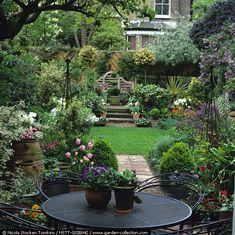 Back yard abundance - looks like 1329 Love Garden, Green Garden, Home And Garden, Back Gardens, Small Gardens, Outdoor Gardens, Landscaping Melbourne, Walled Garden, Garden Pictures