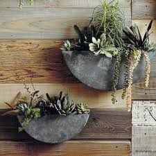 Succulent galvanized metal wall hanging baskets.