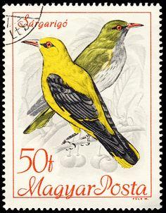 Hungría 1968 - Orioles ,pájaros cantores