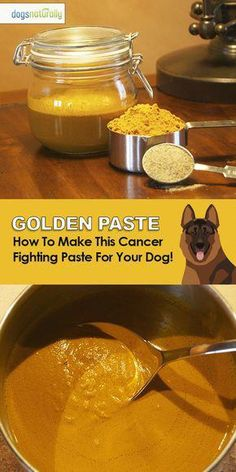Healing Golden Turmeric Paste Recipe For Your Dog Make golden paste for your dog with these 4 simple ingredients! – This all natural anti-inflammatory spice also helps protect your dogs liver and can even prevent and treat cancer! Dog Treat Recipes, Dog Food Recipes, Golden Paste For Dogs, Golden Paste Recipe, Dog Raw Diet, Food Dog, Dog Care Tips, Pet Care, Puppy Care