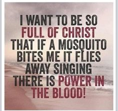 I WANT TO BE SO FULL OF CHRIST THAT IF A MOSQUITO BITES ME, IT FLIES AWAY SINGING THERE IS POWER IN THE BLOOD!  (amen)